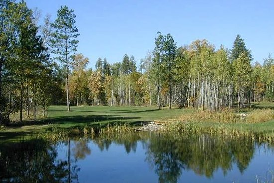 Wildwedge Golf, Mini Golf and Maze : Golf Course Pond