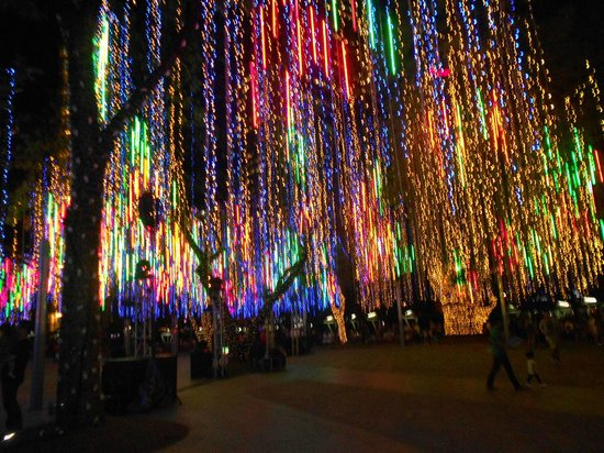 Ayala Triangle Gardens: Interchange of lights...