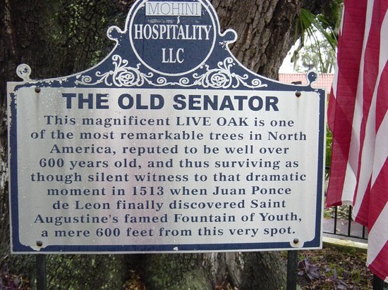 Howard Johnson Inn - Historic ST. Augustine FL : Old Senator sign
