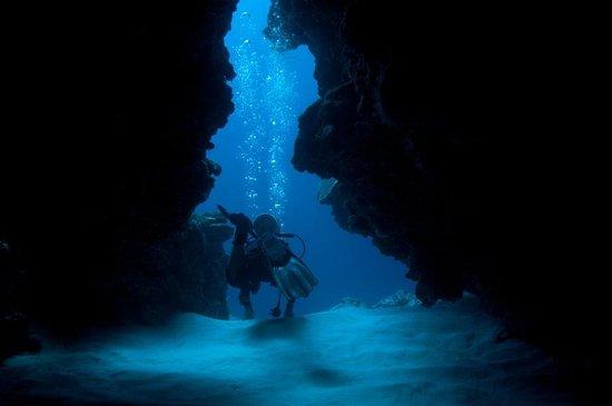 Manta Ray Bay Resort: Yap caverns