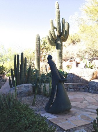 The Phoenician, Scottsdale: cactus garden