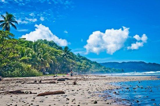 Shaka Beach Retreat: playa hermosa