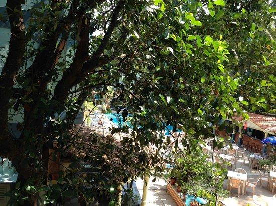 Osborne Resort Goa: View from second Balcony