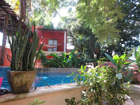 Casa Axis Mundi : Courtyard