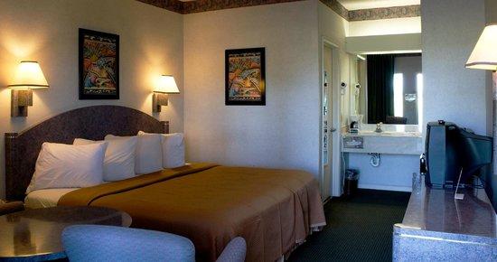 Florence Inns & Suites: Standard King