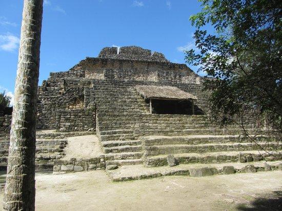 The Native Choice Tours: Chacchoben Mayan Ruins