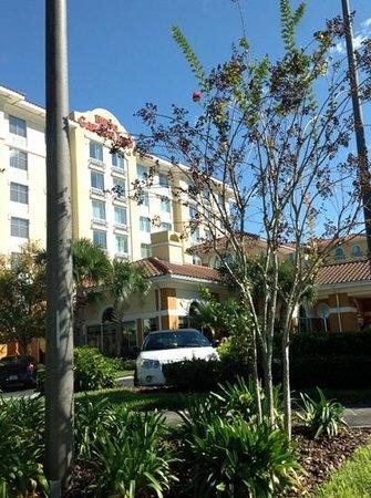 Hilton Garden Inn Lake Buena Vista/Orlando: street view of hotel