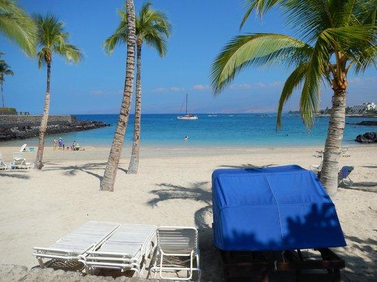 Honu Kai B&B : Private Beach Club