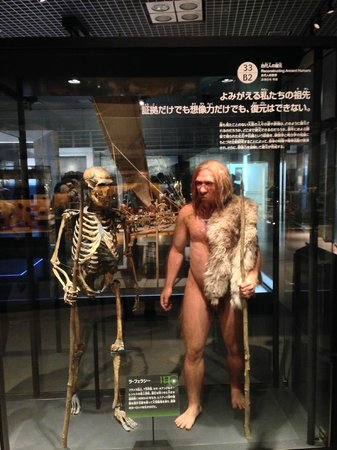 National Science Museum: National Museum of Nature and Science, Tokyo