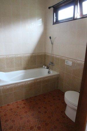 Tanah Semujan Ubud : Bathroom