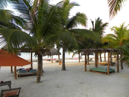 Holbox Hotel Casa las Tortugas - Petit Beach Hotel & Spa : Club de Plage