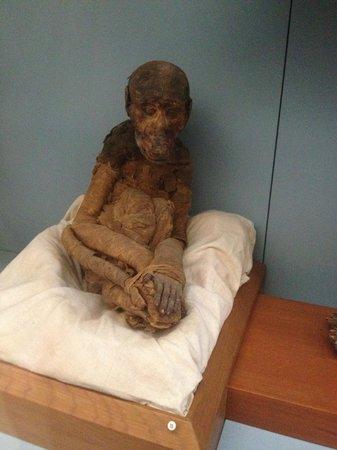 Musée égyptien du Caire : Monkey Mummy