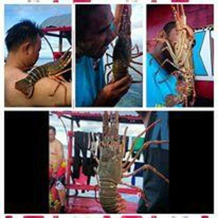 Scuba Jeff Guest House: Fresh lobster