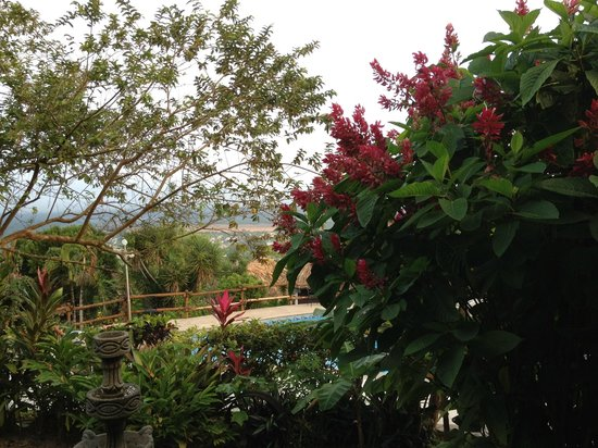 Cahal Pech Village Resort : One view from the dining area