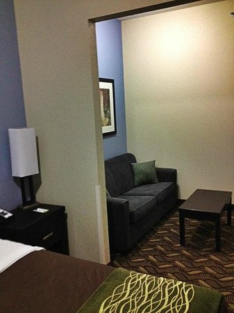 Comfort Inn & Suites I-10 Airport: Sitting Area