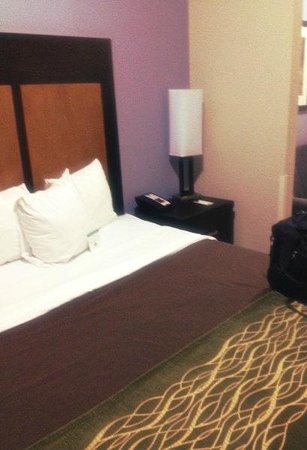 Comfort Inn & Suites I-10 Airport: Bed space - King room