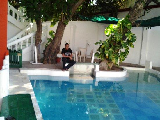 The Hoka Island Villa: The Hotel Pool