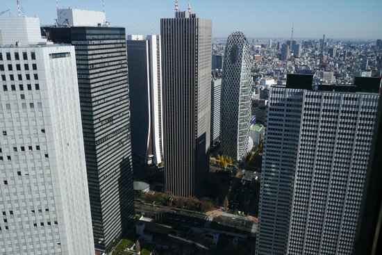 Tokyo Metropolitan Government Buildings : 眼下、目前に見る高層建造物