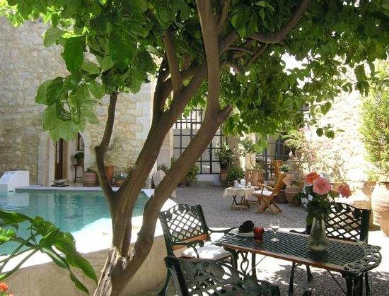 Villa Maroulas Annonce du Propriétaire : lemon tree near the pool