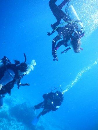 Namena Island Dive Resort: Scuba Diving