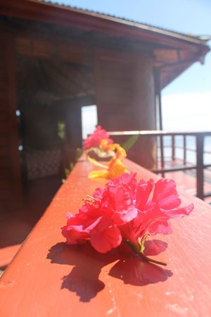 Namena Island Dive Resort: Flowers placed in the a.m.