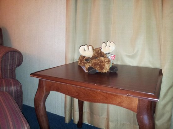 Best Western Merry Manor Inn: Cancer Research Moose