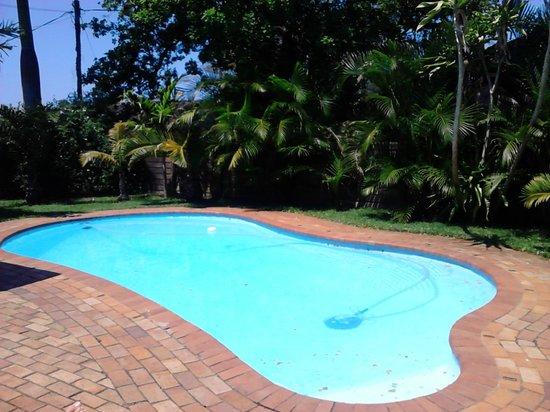 Parkers Cottages: Pool und Garten - sehr schön