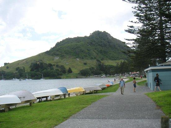 Mount Maunganui Summit Track : Mt Maunganu, taken from Pilot Bay beach
