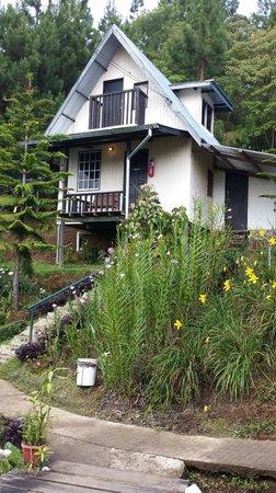 Kiram's Village: cabin