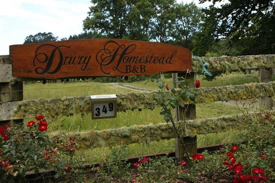 The Drury Homestead: The gate