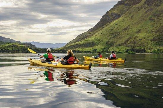 Wanaka Kayaks Sup & Sail: Glendu to Roys Bay, Guided day trip