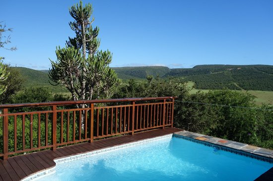 Addo Afrique Estate: View from the sitting room across the pool