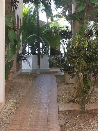 Mariposa Hideaway: Weg zwischen den bungalows
