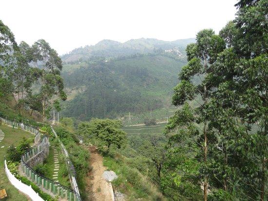 Devonshire Greens: View1