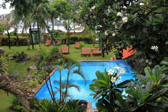 The Sari Beach : Gartenanlage mit Pool