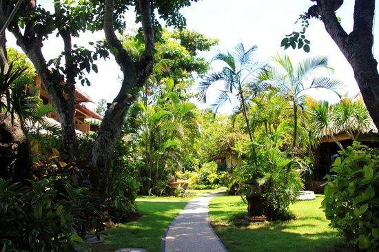 The Sari Beach : Gartenanlage Weg zu den Zimmern