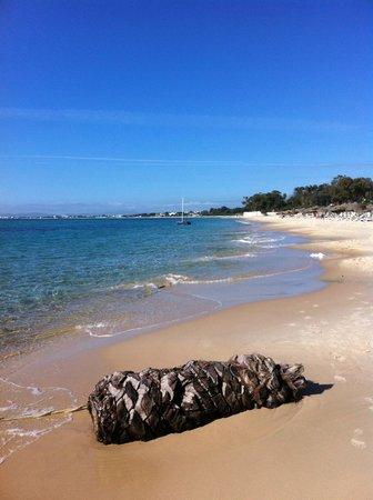 The Sindbad: Eylülde plaj