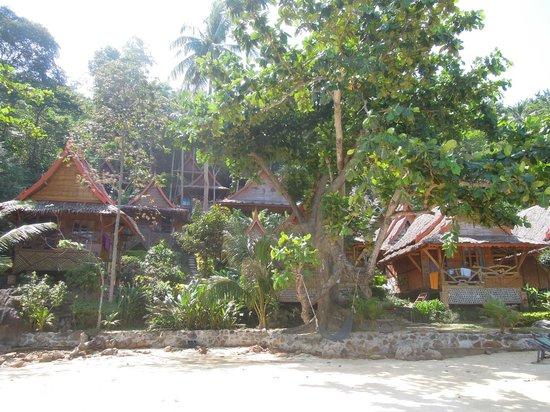 Phi Phi Relax Beach Resort: uitzicht op complex vanaf strand