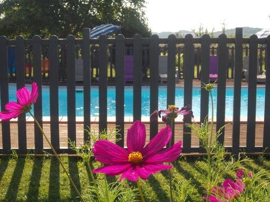 Les Passiflores : la piscine, avec ses transats et parasols