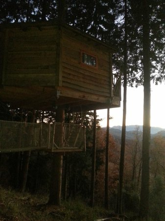 Cabanes als Arbres: Cabana Rossinyol