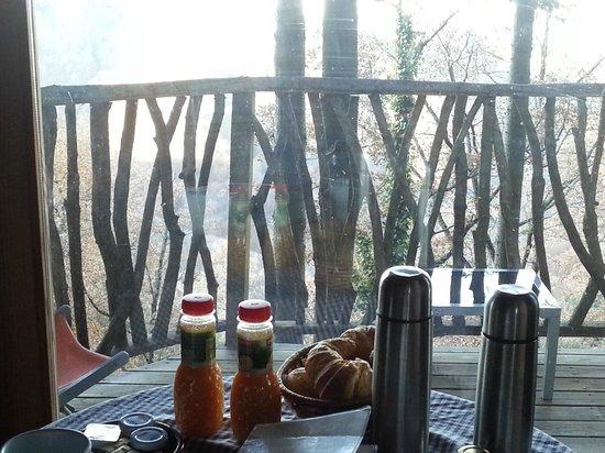 Cabanes als Arbres: Desayuno en la Rossinyol