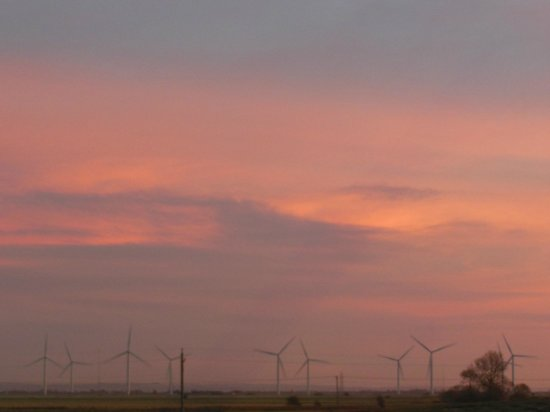 Point Farm B&B : Great sky