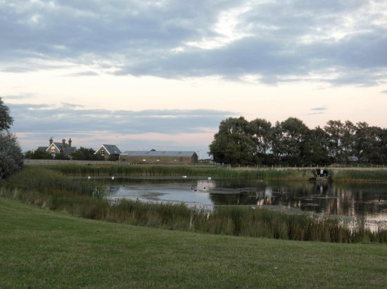 Point Farm B&B : The view from the drive