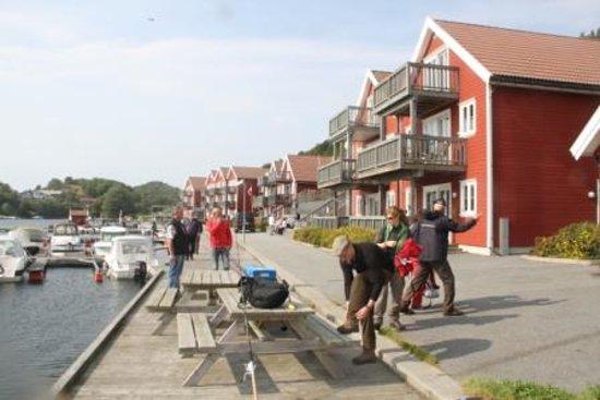 Im Feriesenter von Tregde, im Hintergrund die roten Ferienhäuser mit Balkon zum Wasser hin!