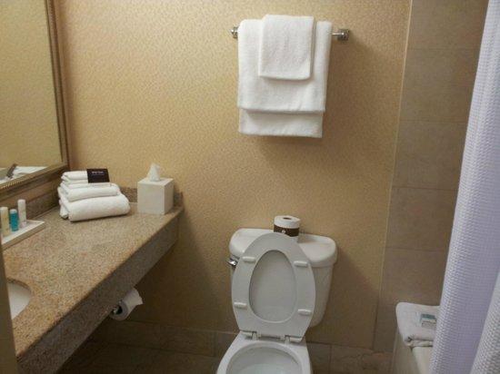 Omni Charlotte Hotel : Omni bathroom