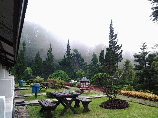 Puncak Pass Resort: pemandangan dari teras saat turun kabut