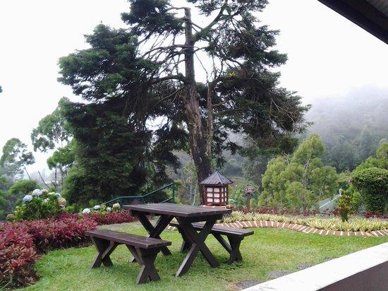 Puncak Pass Resort: meja piknik di depan bungalow