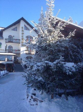 Hotel Crocus : Exterior