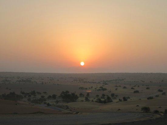 Al Maha, A Luxury Collection Desert Resort & Spa: オプショナルツアーにて