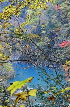 Dakigaeri Valley : Colors along the blue